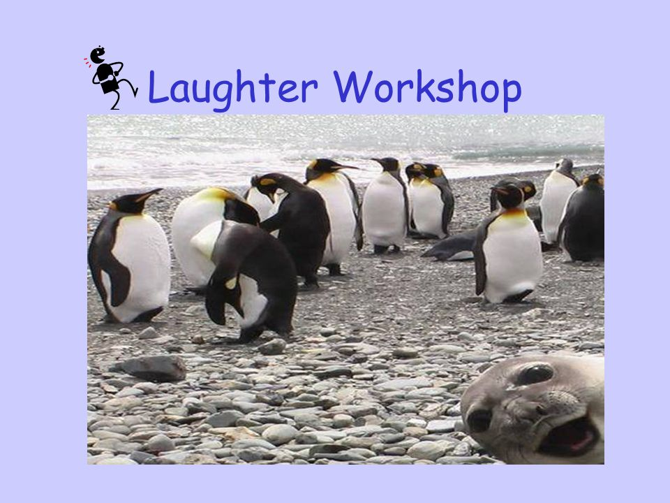 Laughter Workshop