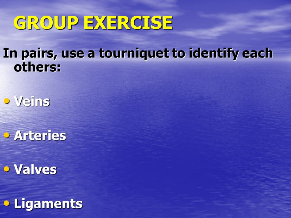 GROUP EXERCISE In pairs, use a tourniquet to identify each others: