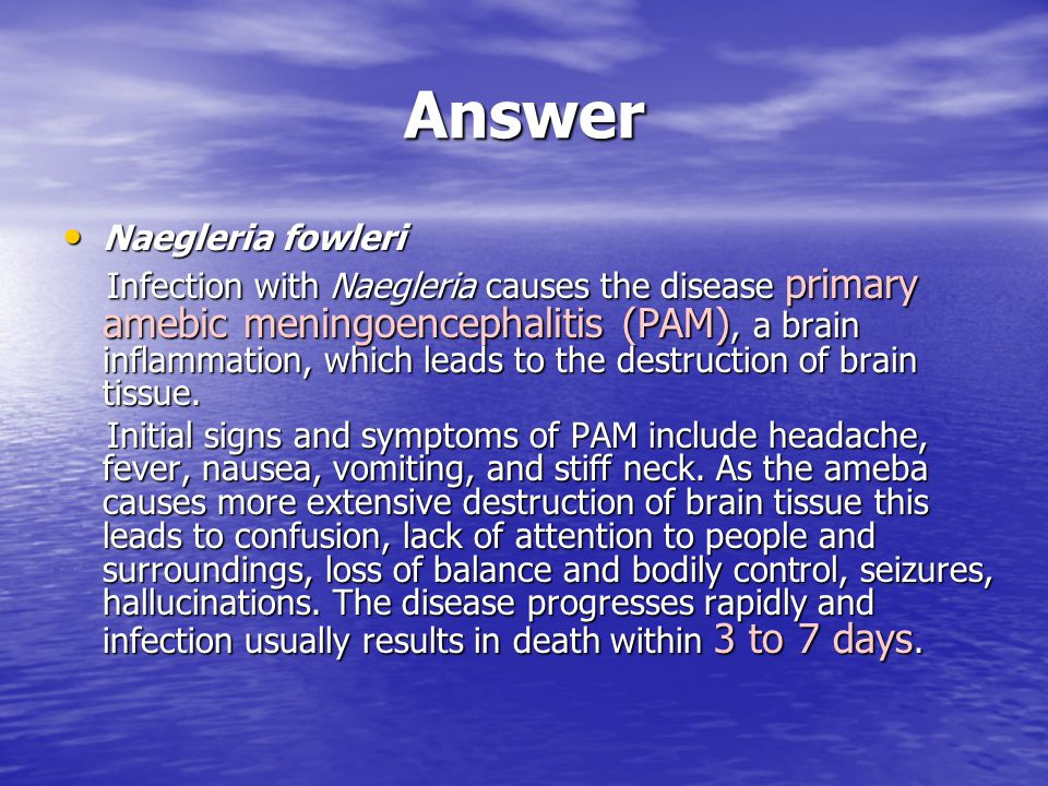 Answer Naegleria fowleri