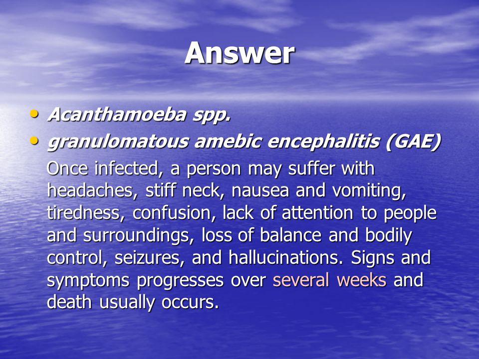 Answer Acanthamoeba spp. granulomatous amebic encephalitis (GAE)