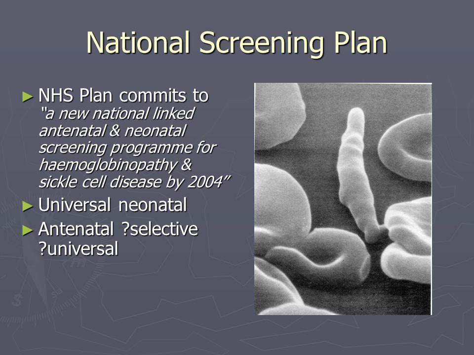 National Screening Plan
