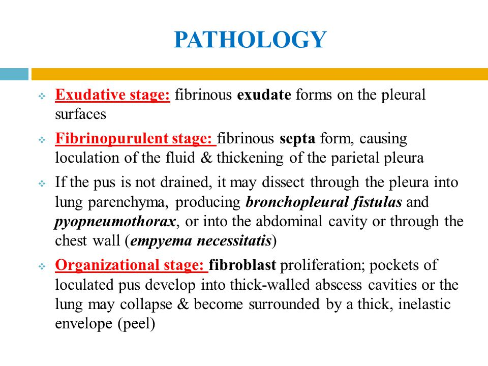 PATHOLOGY Exudative stage: fibrinous exudate forms on the pleural surfaces.
