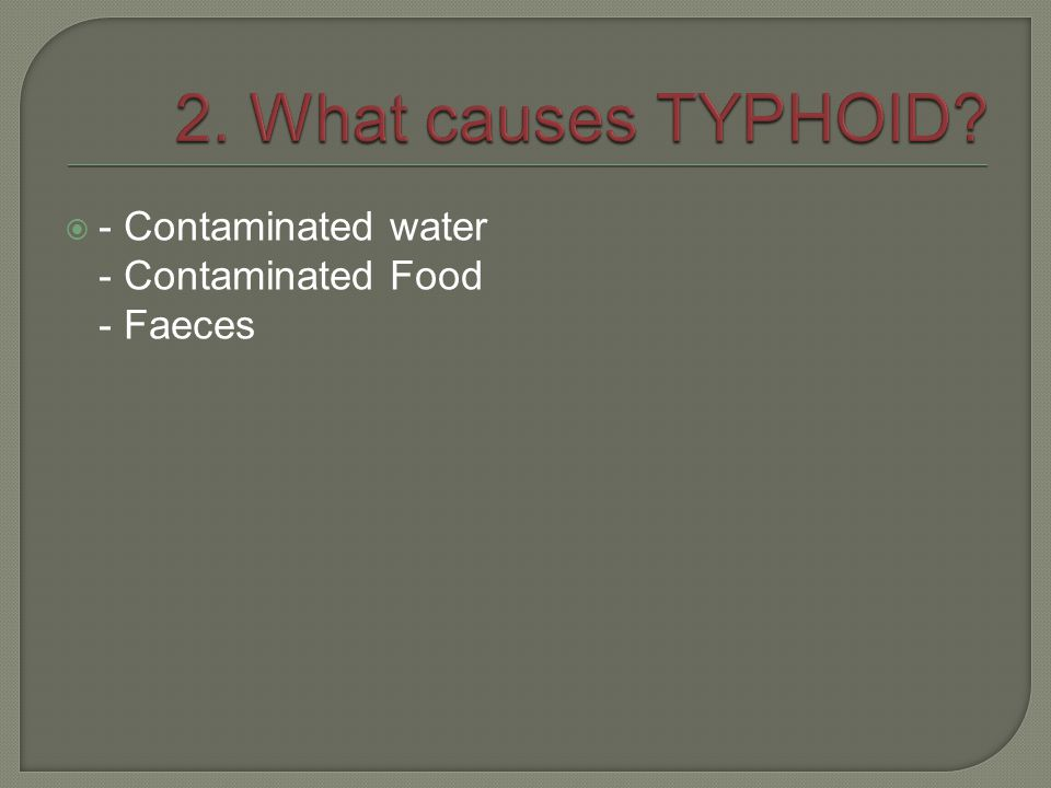 2. What causes TYPHOID - Contaminated water - Contaminated Food