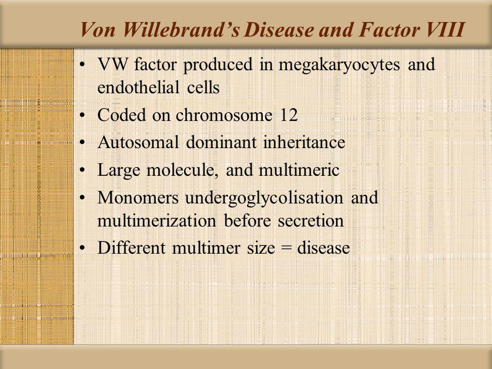 Von Willebrand's Disease and Factor VIII