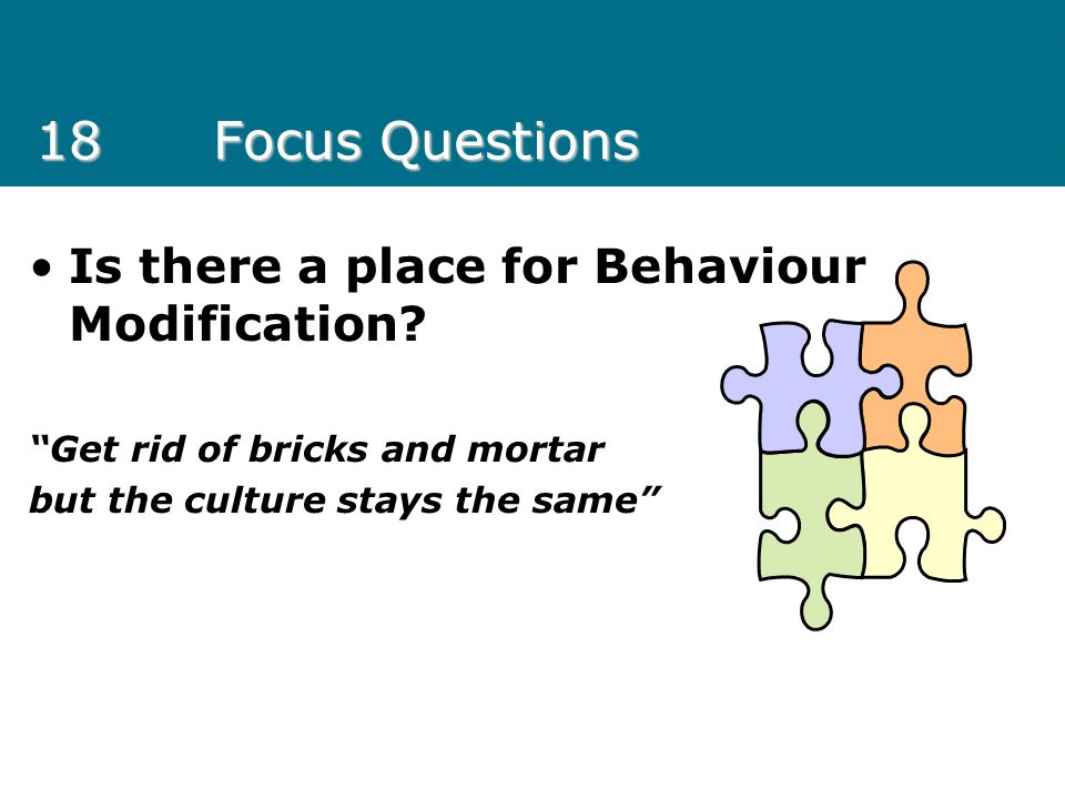 18 Focus Questions Is there a place for Behaviour Modification