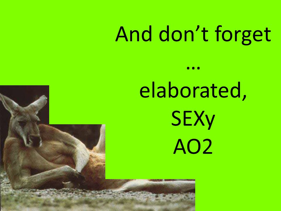 And don't forget … elaborated, SEXy AO2
