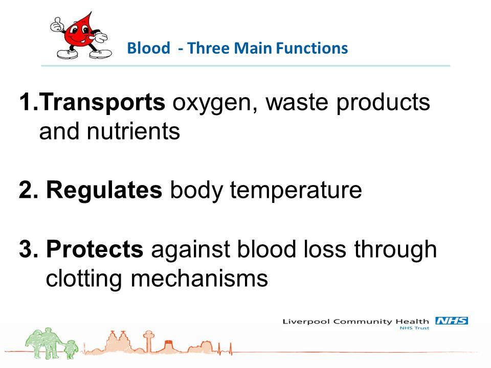 1.Transports oxygen, waste products and nutrients