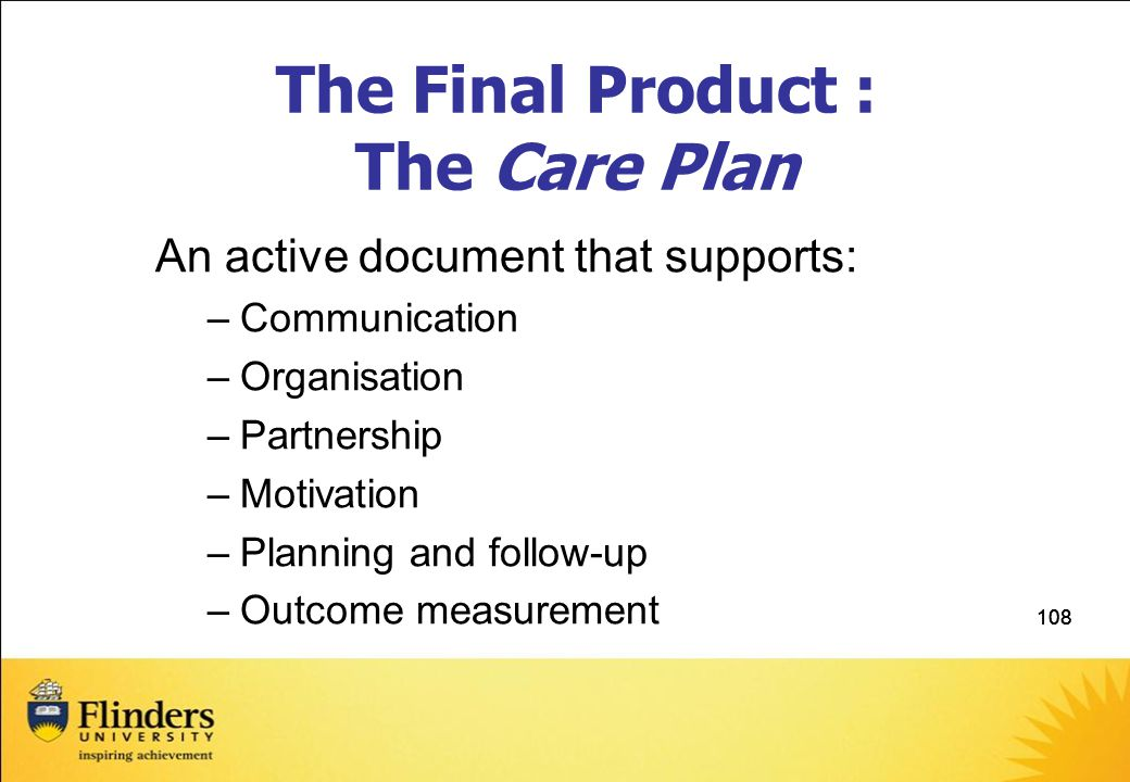 The Final Product : The Care Plan