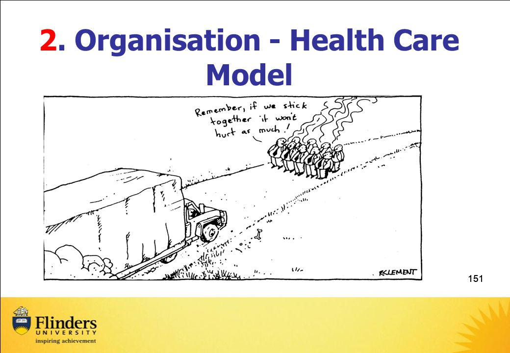 2. Organisation - Health Care Model