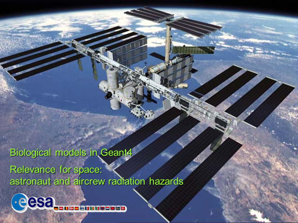 Biological models in Geant4 Relevance for space: astronaut and aircrew radiation hazards