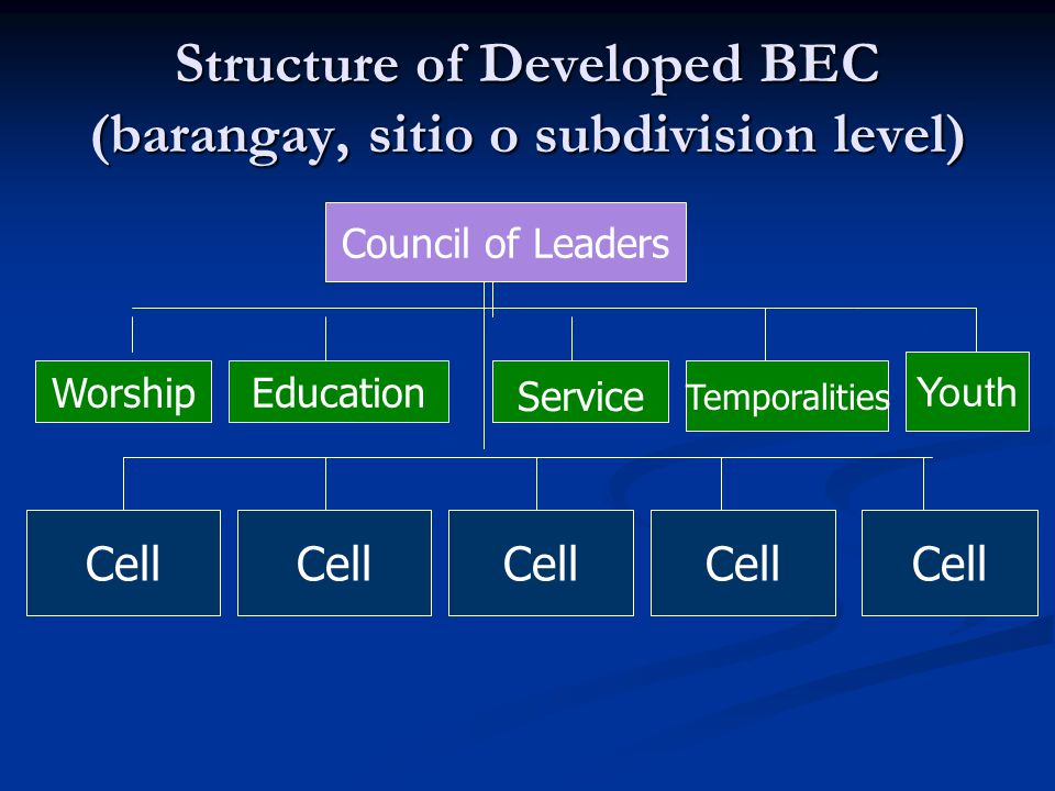 Structure of Developed BEC (barangay, sitio o subdivision level)