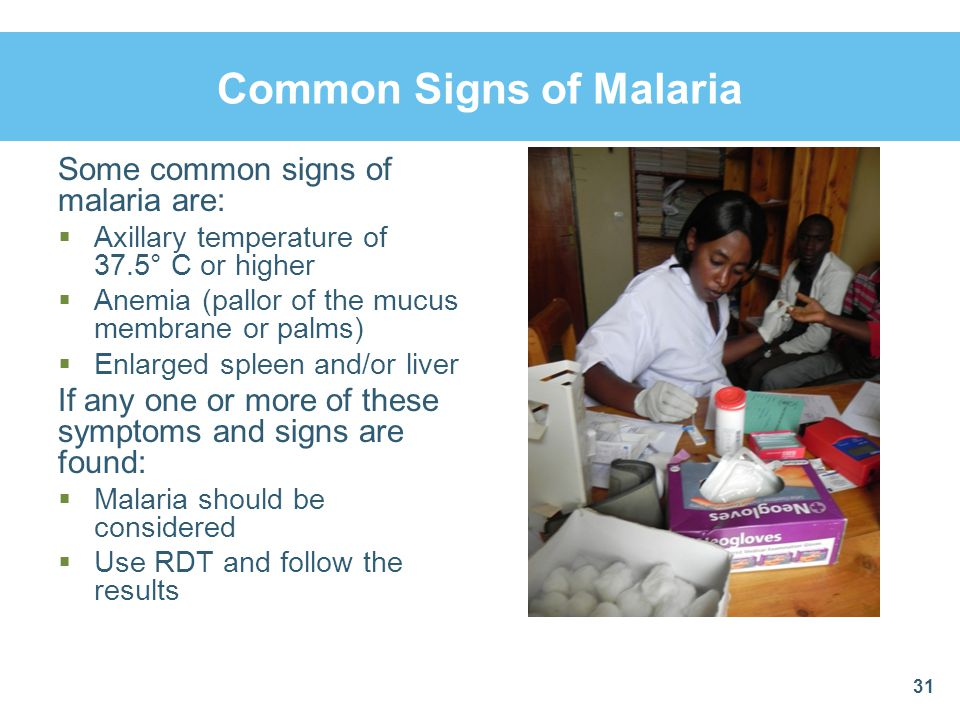 Common Signs of Malaria