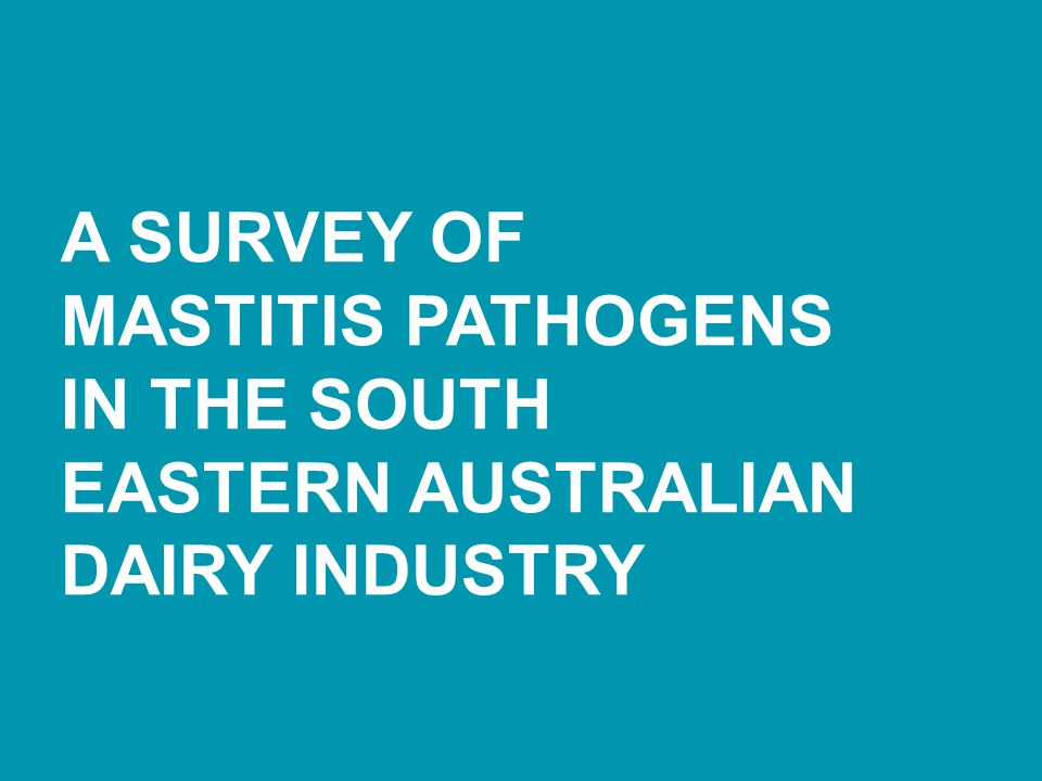 A Survey of Mastitis Pathogens in the South Eastern Australian Dairy Industry