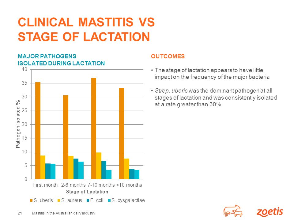 CLINICAL MASTITIS VS STAGE OF LACTATION