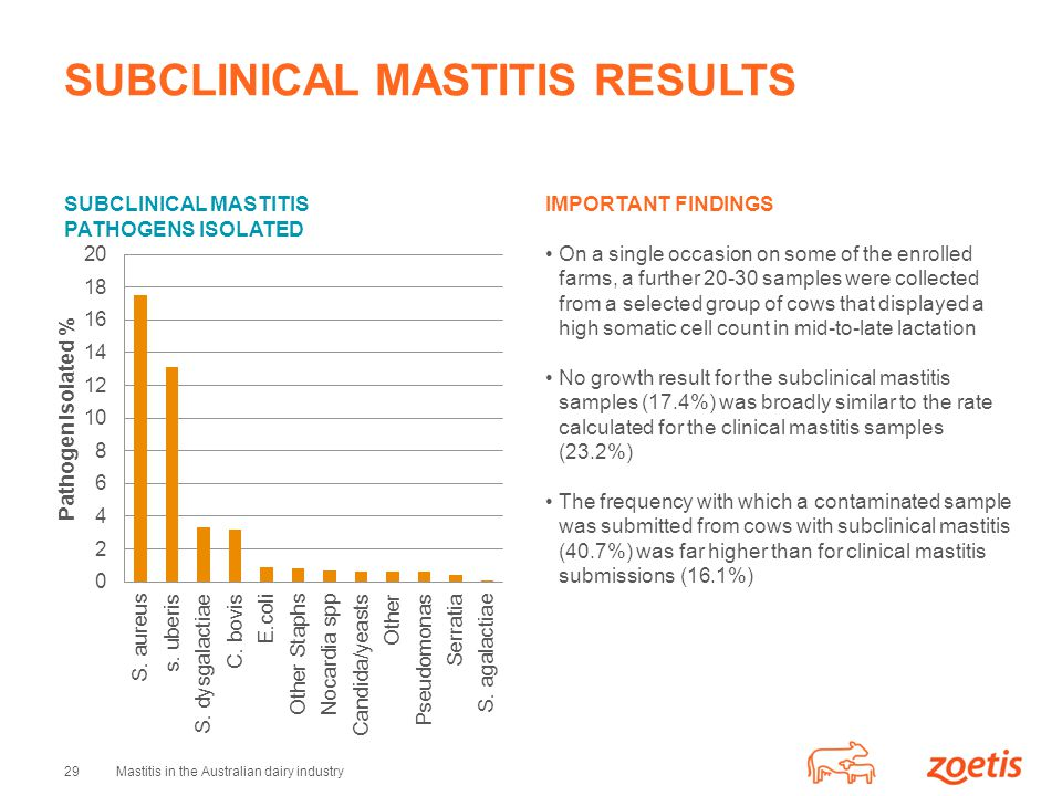 SUBCLINICAL MASTITIS RESULTS