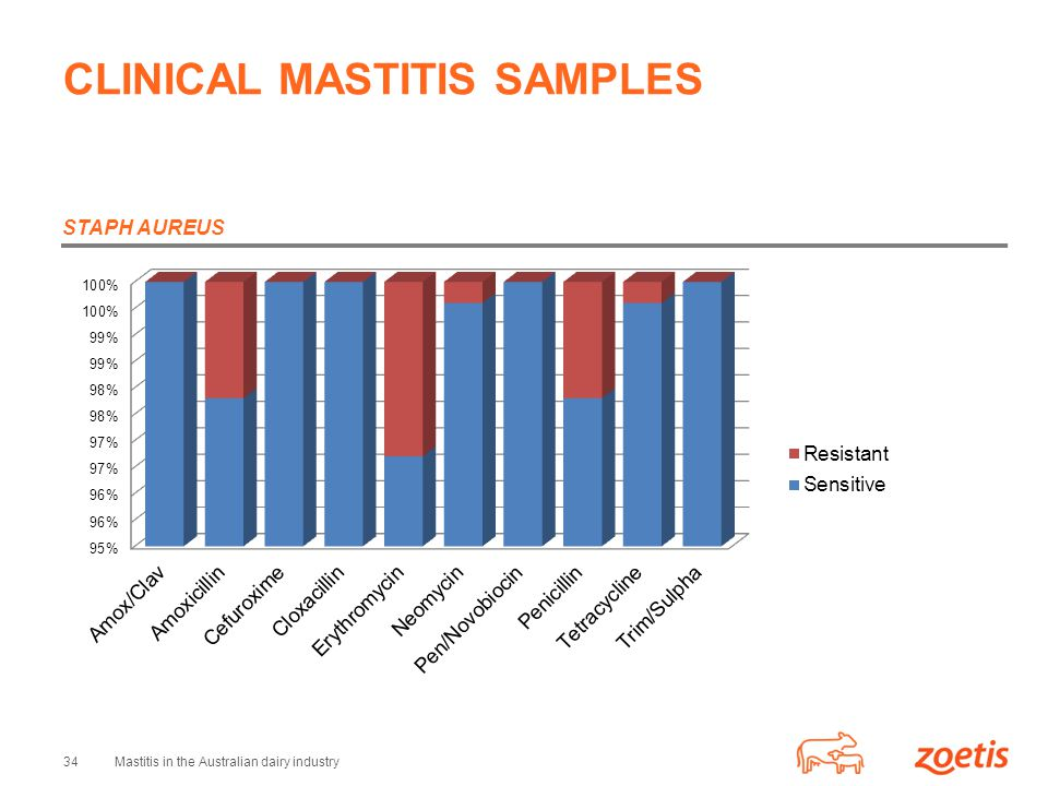 CLINICAL MASTITIS SAMPLES