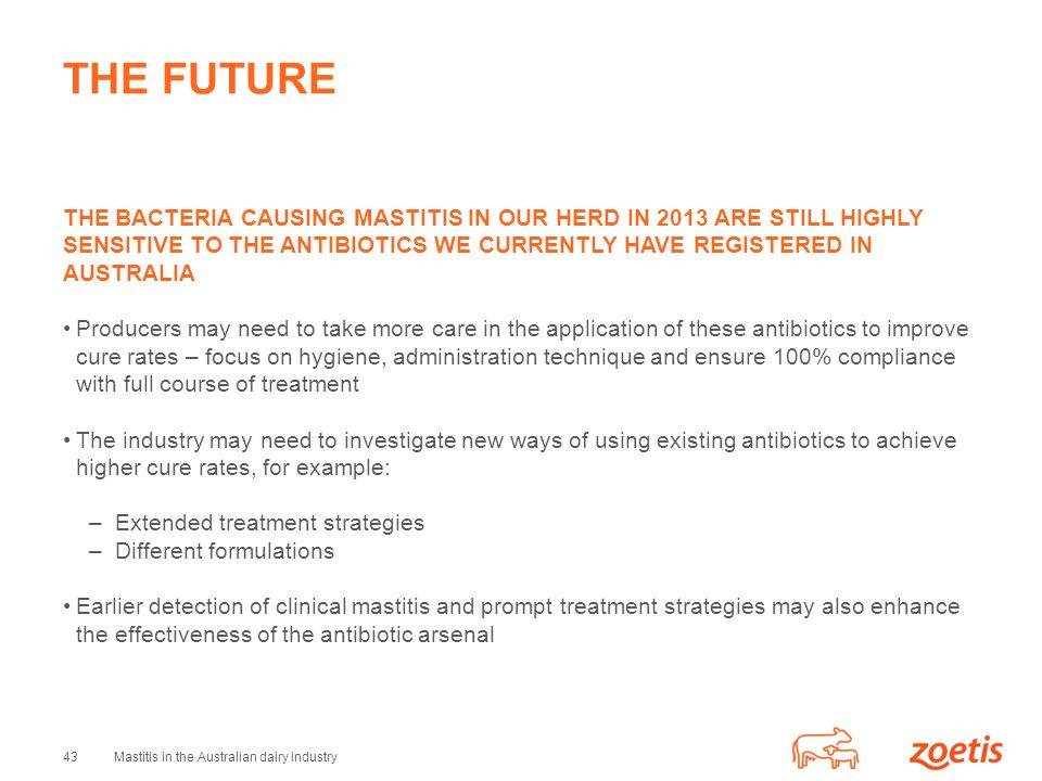 THE FUTURE THE BACTERIA CAUSING MASTITIS IN OUR HERD IN 2013 ARE STILL HIGHLY SENSITIVE TO THE ANTIBIOTICS WE CURRENTLY HAVE REGISTERED IN AUSTRALIA.