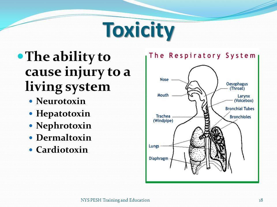 Toxicity The ability to cause injury to a living system Neurotoxin