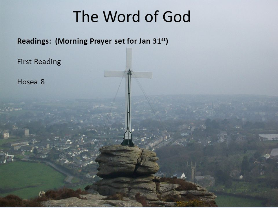 The Word of God Readings: (Morning Prayer set for Jan 31st) First Reading Hosea 8