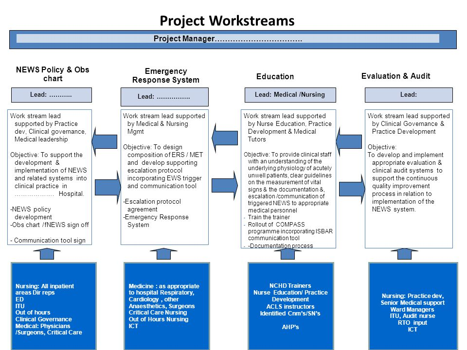 Project Workstreams 17 Project Manager…………………………….