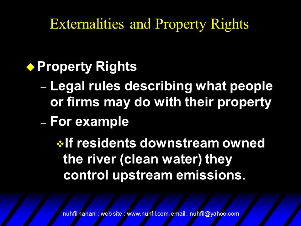 Externalities and Property Rights