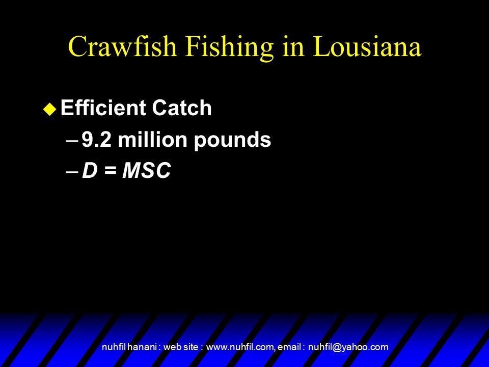 Crawfish Fishing in Lousiana