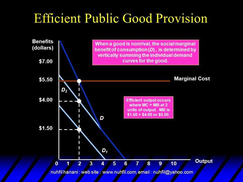Efficient Public Good Provision