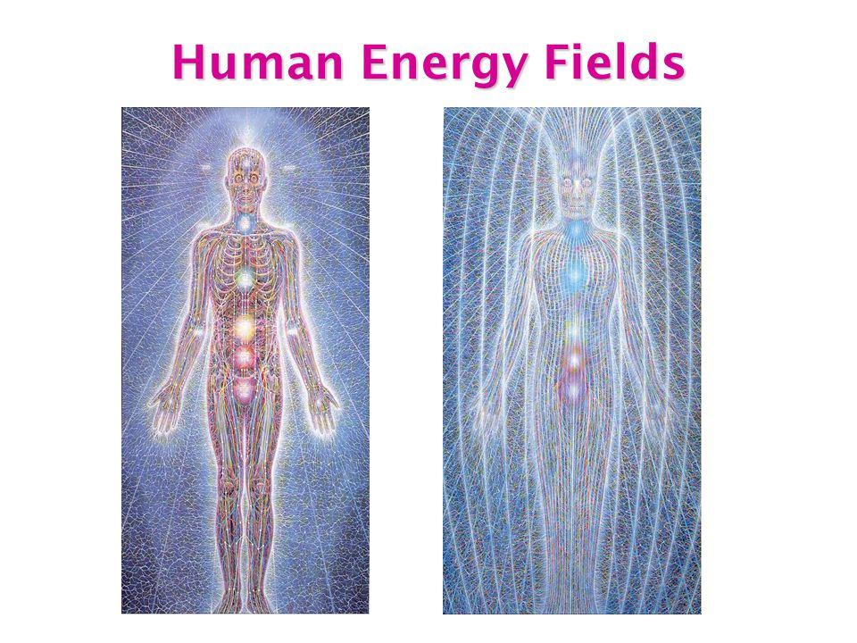 Human Energy Fields