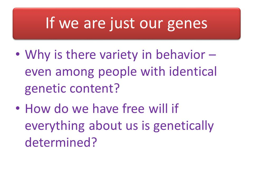If we are just our genes Why is there variety in behavior – even among people with identical genetic content