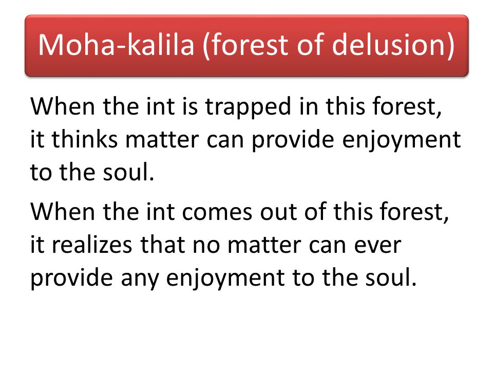 Moha-kalila (forest of delusion)
