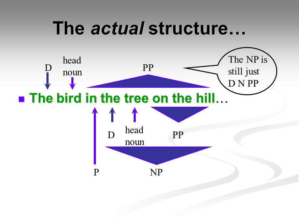 The actual structure… The bird in the tree on the hill… head noun