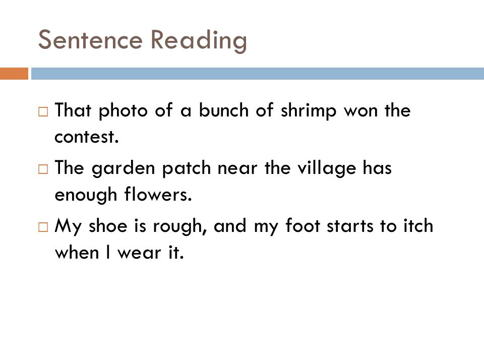 Sentence Reading That photo of a bunch of shrimp won the contest.