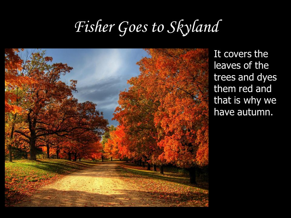 Fisher Goes to Skyland It covers the leaves of the trees and dyes them red and that is why we have autumn.