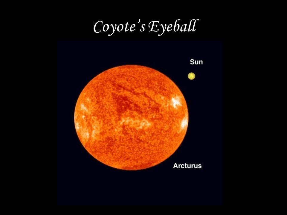 Coyote's Eyeball