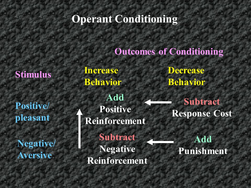 Operant Conditioning Outcomes of Conditioning Increase Behavior
