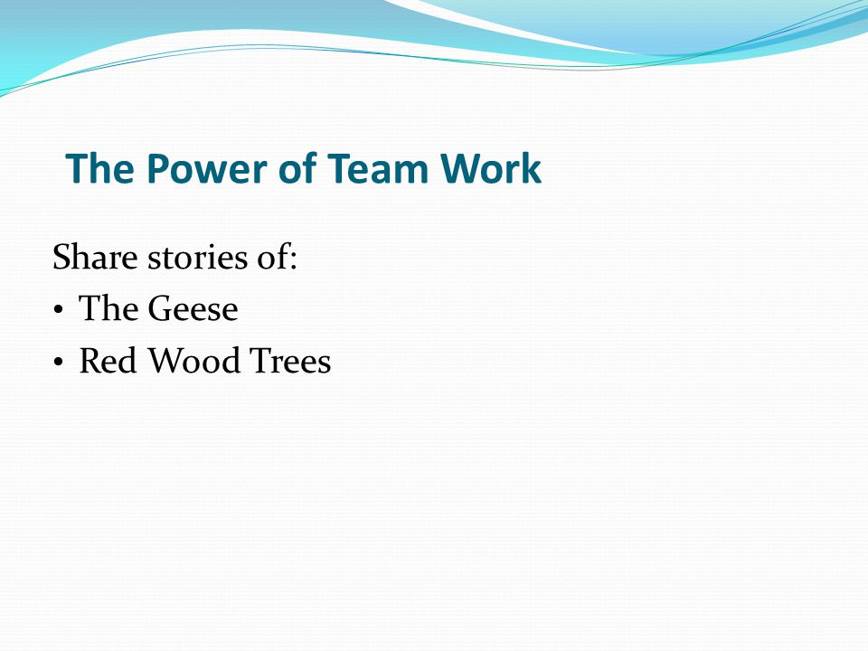 The Power of Team Work Share stories of: The Geese Red Wood Trees