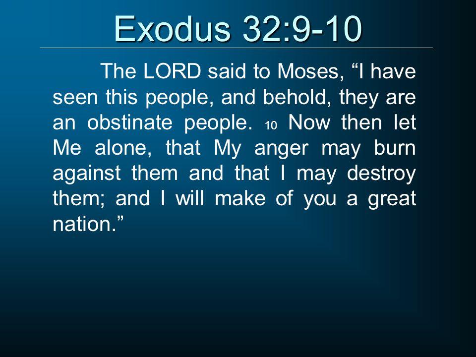 Exodus 32:9-10