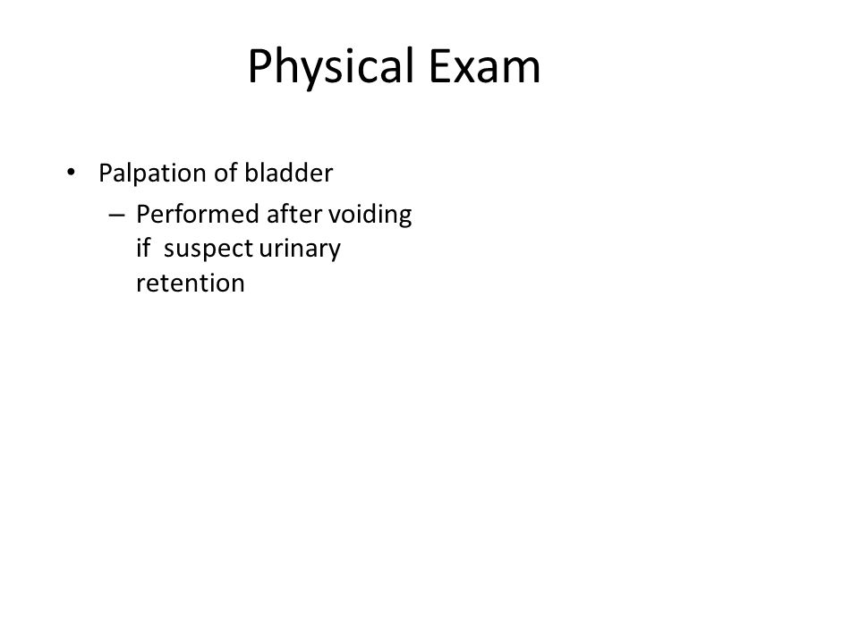 Physical Exam Palpation of bladder