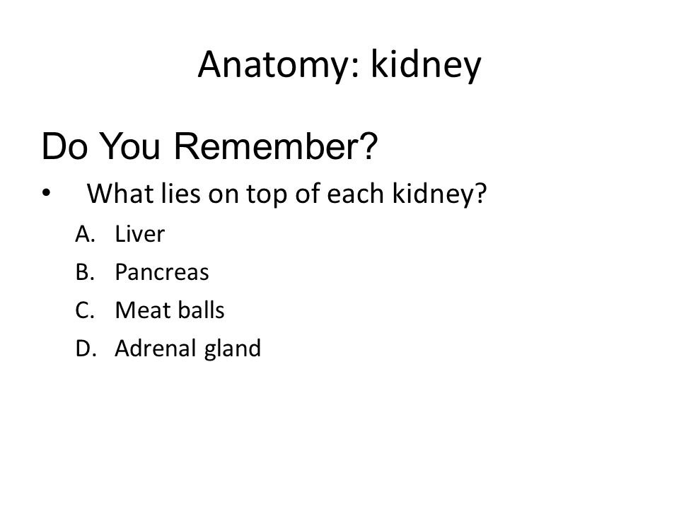 Anatomy: kidney Do You Remember What lies on top of each kidney