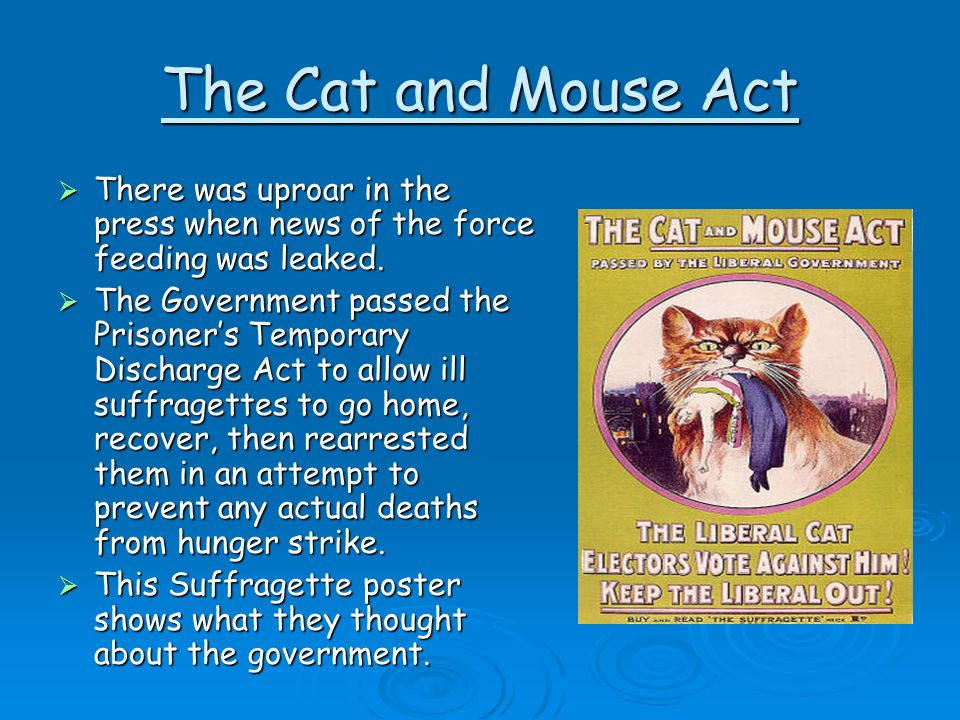 The Cat and Mouse Act There was uproar in the press when news of the force feeding was leaked.