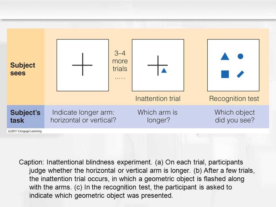 Caption: Inattentional blindness experiment