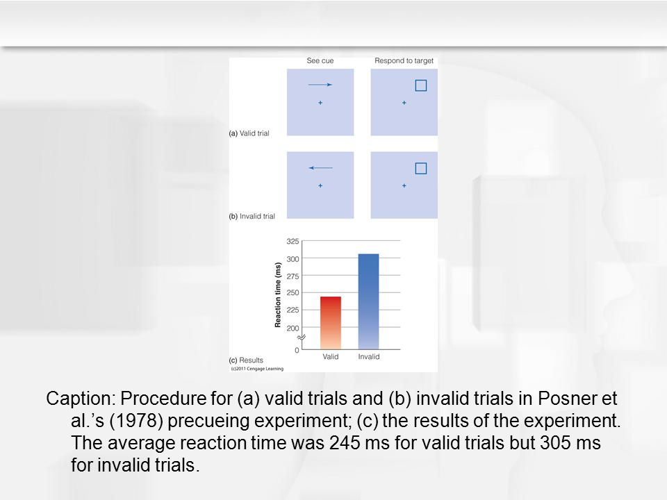 Caption: Procedure for (a) valid trials and (b) invalid trials in Posner et al.'s (1978) precueing experiment; (c) the results of the experiment.