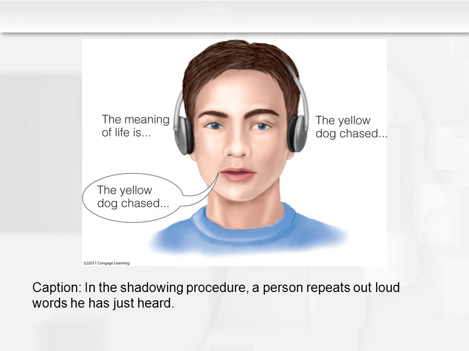 Caption: In the shadowing procedure, a person repeats out loud words he has just heard.