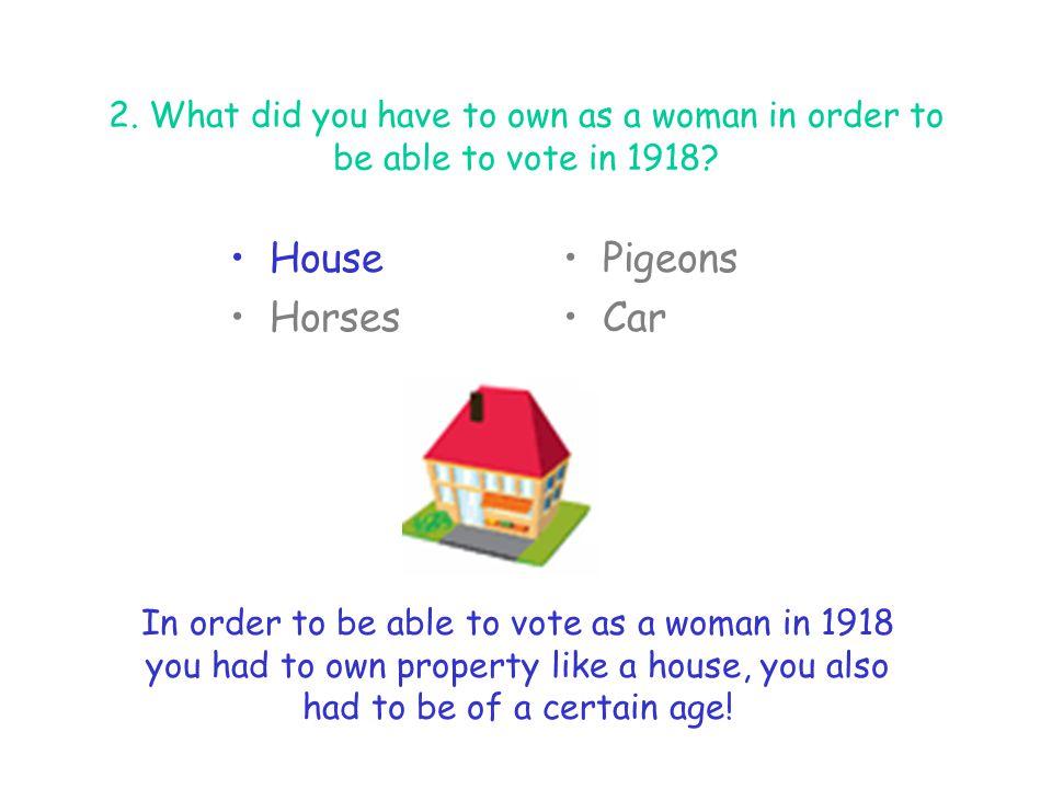 House Horses Pigeons Car