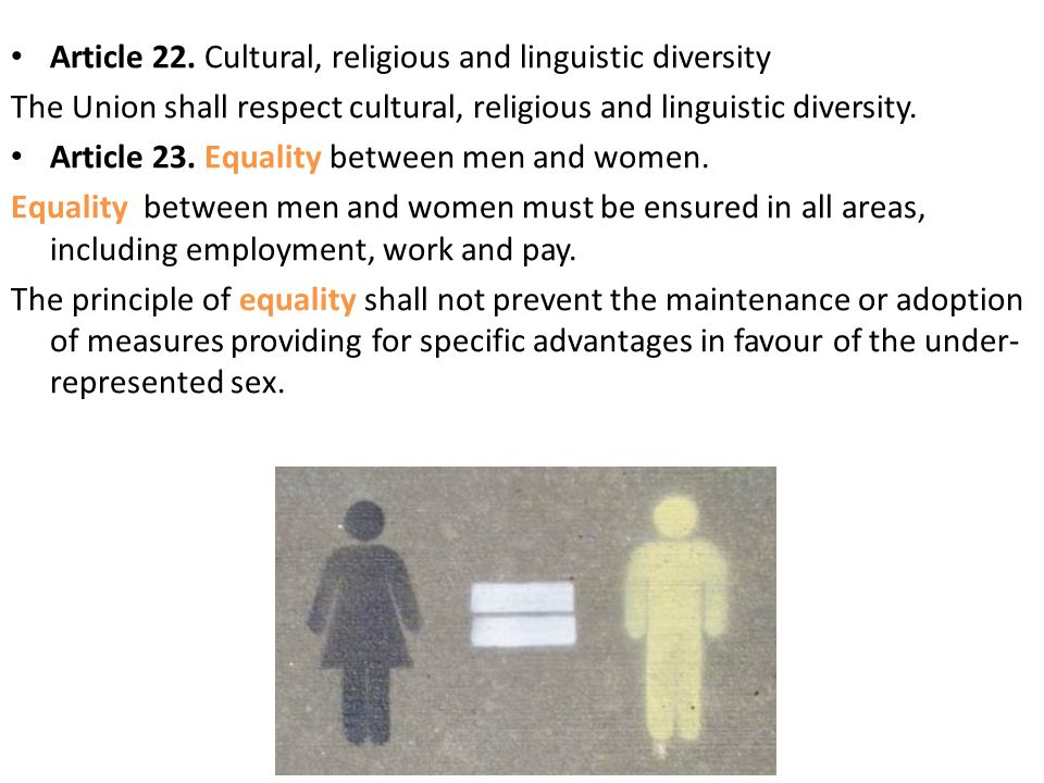Article 22. Cultural, religious and linguistic diversity