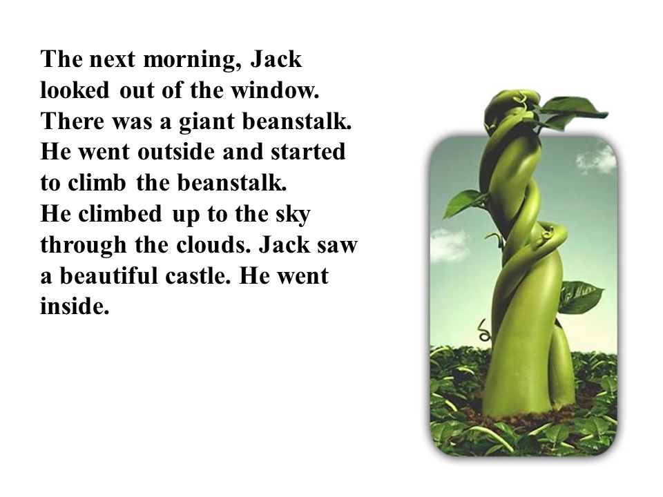 The next morning, Jack looked out of the window