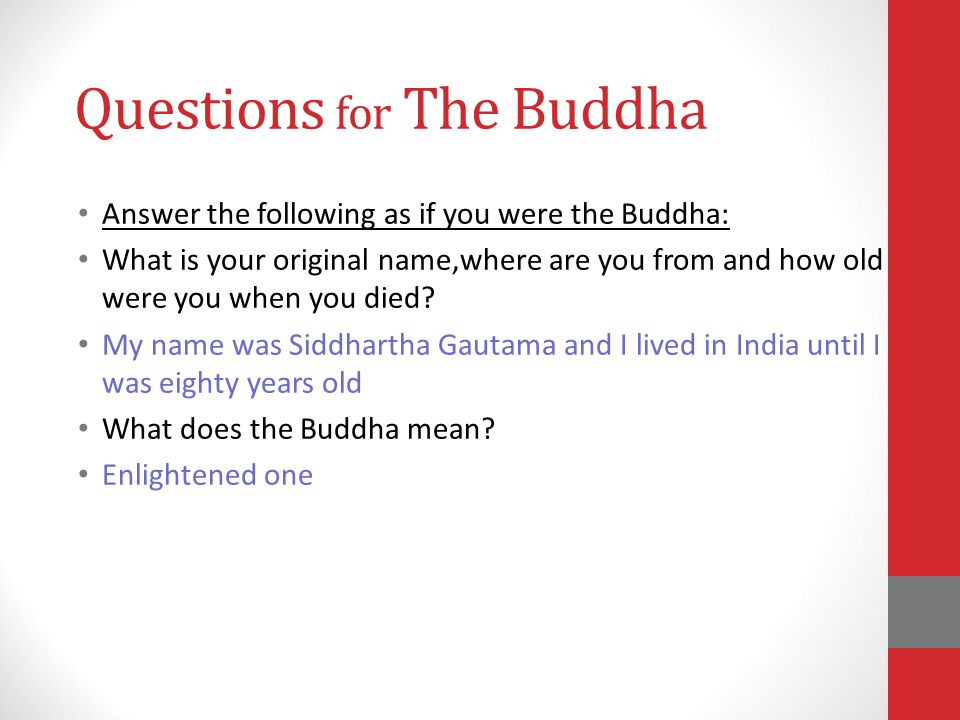 Questions for The Buddha