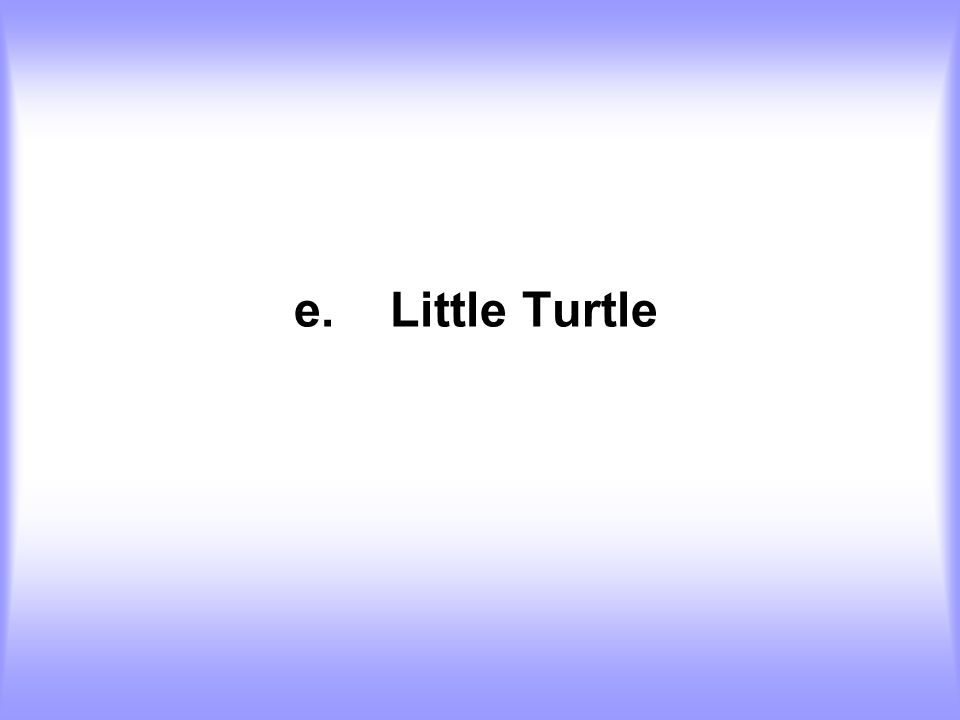 e. Little Turtle