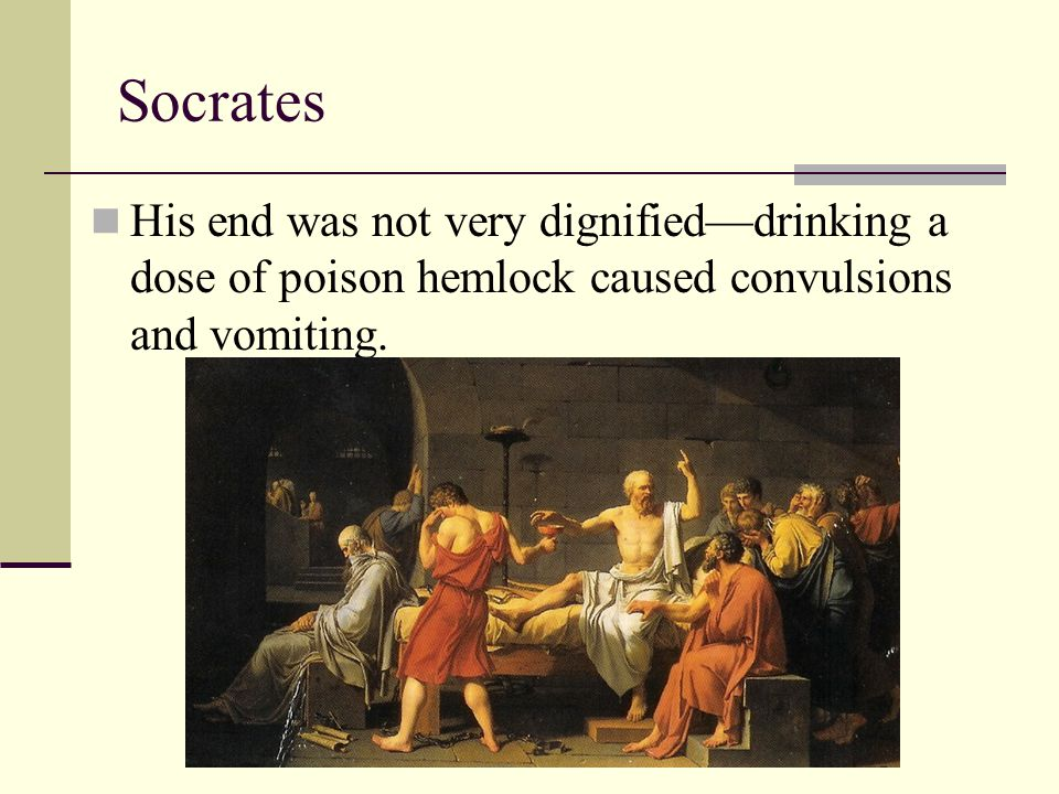 Socrates His end was not very dignified—drinking a dose of poison hemlock caused convulsions and vomiting.