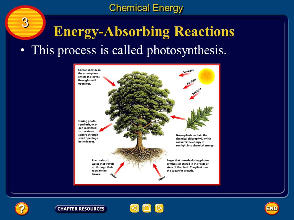 Energy-Absorbing Reactions